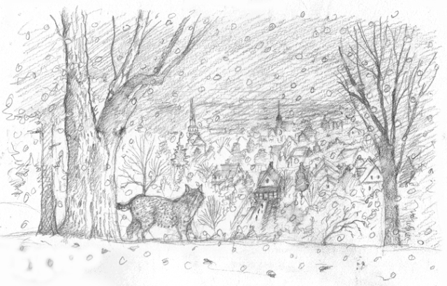 Behind the houses were expanses of land—in front, nothing; in back, everything—and back there we had, in warmer weather, forest, poison ivy, grapes that one year we harvested and drained in cheesecloth sacks, dripping, to make grape jelly, and, once, a bobcat.